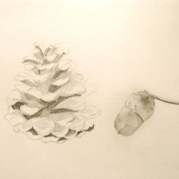 Pineapple with Acorn by Paula Kuitenbrouwer