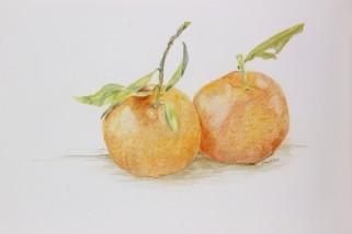 Mandarins/Tangerines