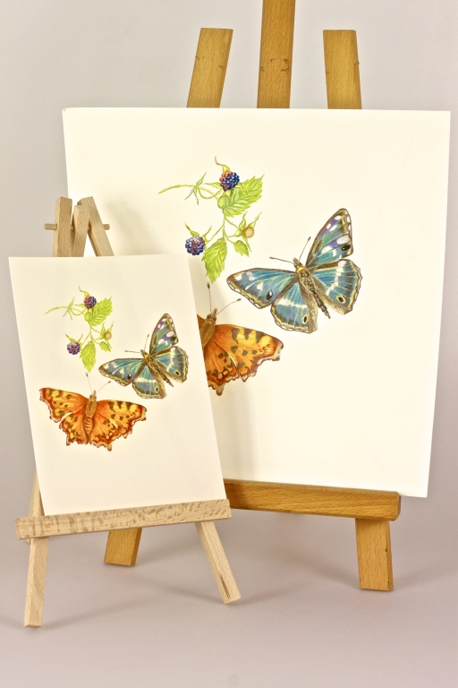 Butterflies with Brambles