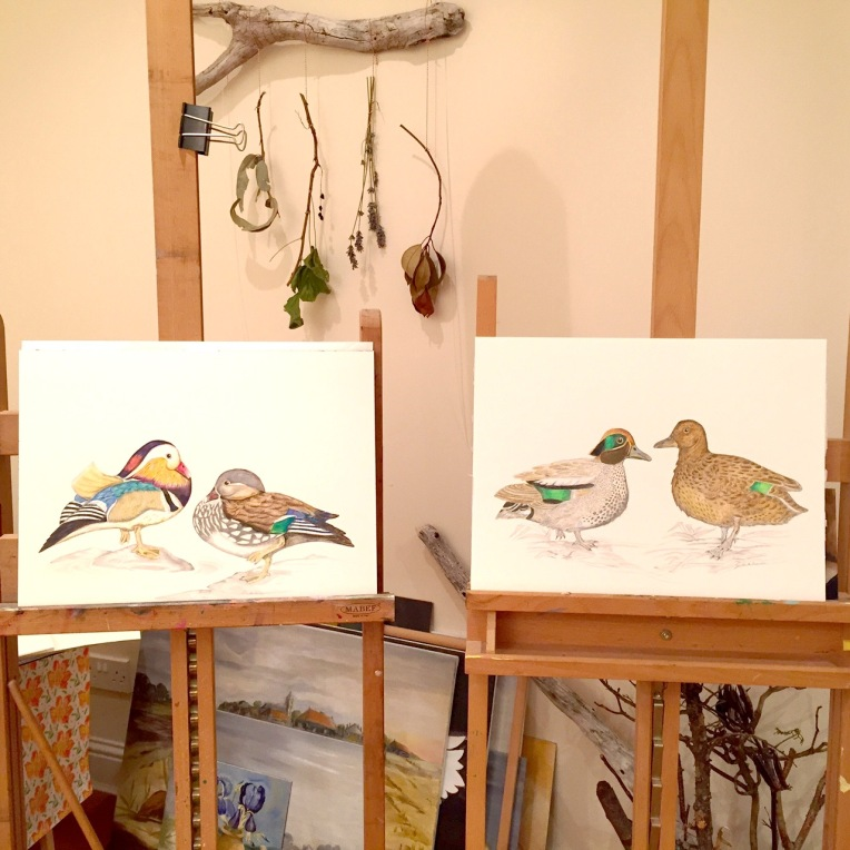Studio Picture with Ducks on my Easel (1)