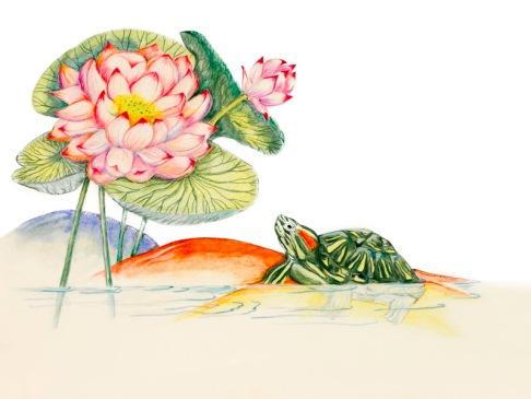 Lotuswithtortoise