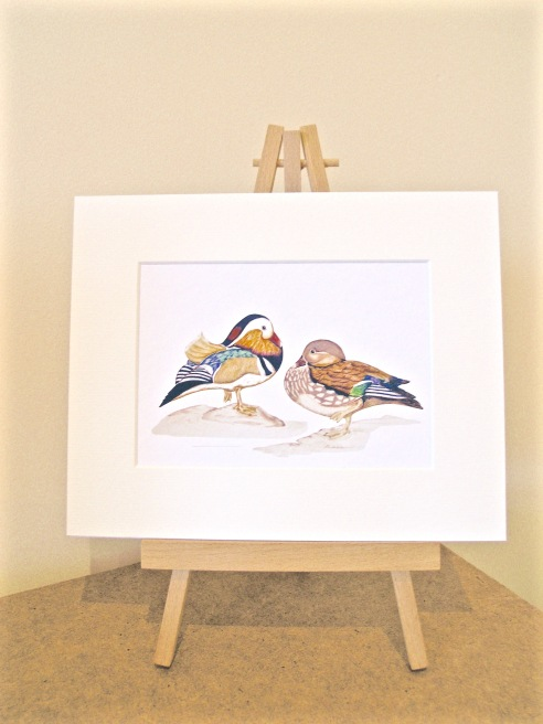 Mandarin ducks on easel