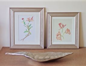 Framed Botany Prints with Silver Leaf