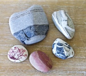 Beach treasures