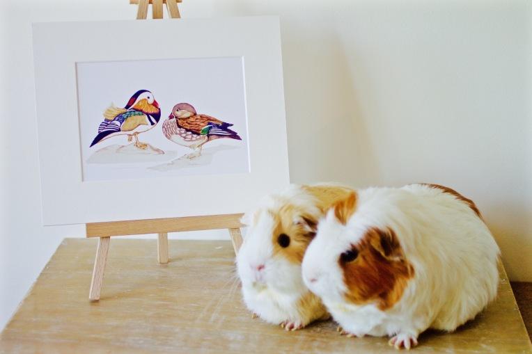 Mandarin Print with piggies