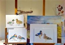 3 duck couples
