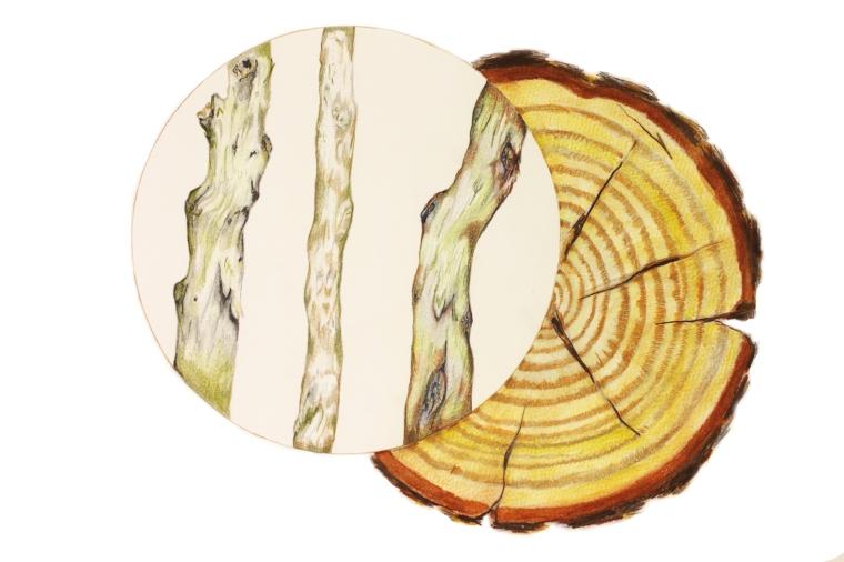 WoodelementEtsy
