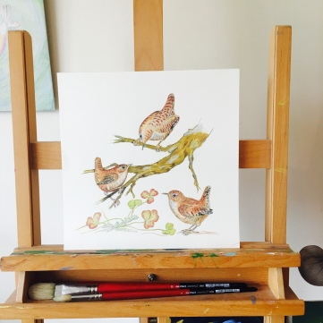 A Wren Family by Paula Kuitenbrouwer on www.paulaartshop.com
