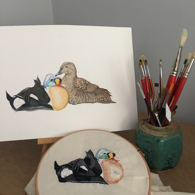 King Eider Drawing & Embroidery