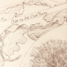'Ode to All Oak Trees' copyright by Paula Kuitenbrouwer