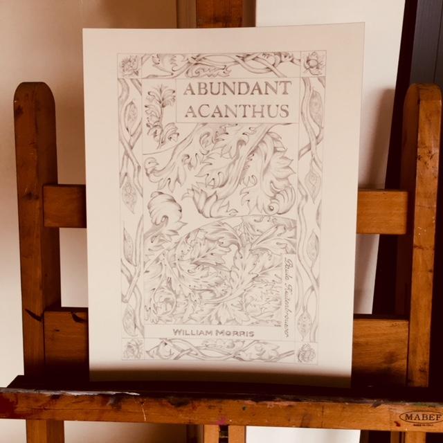 Abundant Acanthus