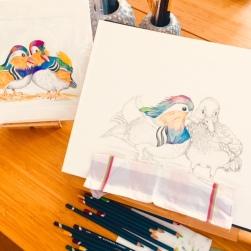 Mandarin Ducks Colour Wash