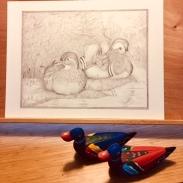 Mandarin ducks, classical graphite drawing by Paula Kuitenbrouwer